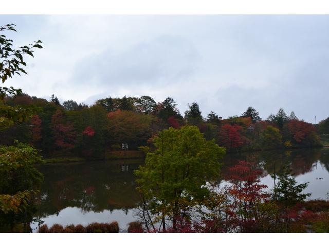 10月22日(火)の紅葉♪