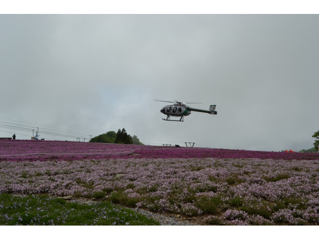 10周年記念 芝桜遊覧飛行