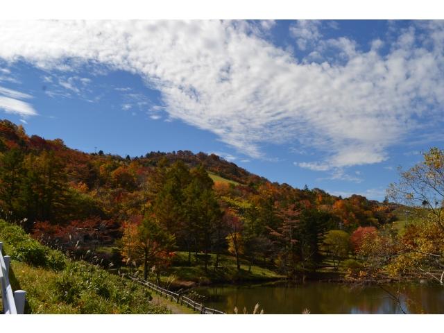 2021 秋の茶臼山高原まつり